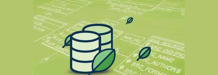 """如何""""玩转""""MongoDB?罗辑思维数据库性能优化之路!"""